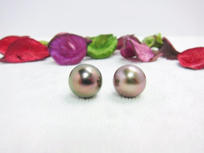 12mm  虹光南洋黑珍珠耳環【元圓珠寶】