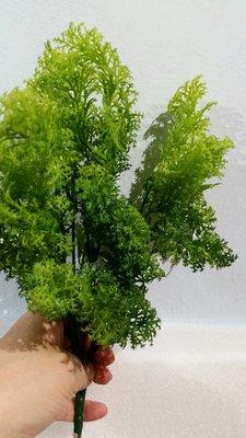 創意仿真植物----水草葉(人造)