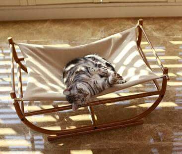 Tiny Tai外銷歐美寵物用品l~高質感《鐵藝貓狗吊床》