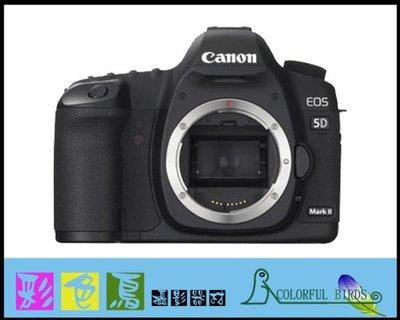 彩色鳥 (二手相機 二手鏡頭) Canon 5D2 二手出清 機身 單眼相機 EOS 5D Mark II