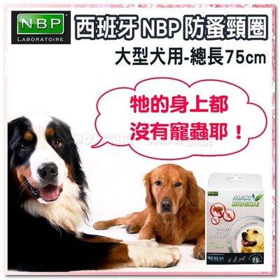 ☆SNOW☆ 西班牙NBP防蚤頸圈-大型犬用 (82110670