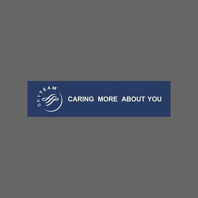 SkyTeam 天合聯盟 Caring more about You 橫幅 防水貼紙 筆電 行李箱 尺寸120x30mm