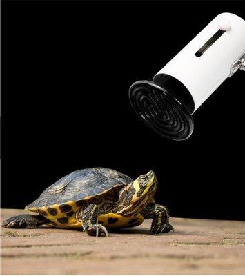 鸚鵡 蜜袋鼯 鳥類 刺蝟 兔貂 小動物陶瓷保溫燈 寵物保暖燈 伸縮燈筒加熱燈 聚熱夾燈(不含燈泡)每件290元