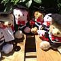 * 晴天*婚禮小物 畢業熊、學士熊、關節熊 泰迪熊~學士熊娃娃5吋 畢業小熊
