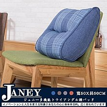 【BNS居家生活館】Janey珍妮多功能牛角護腰墊(大)/透氣舒適/腰靠/腰酸背痛小幫手