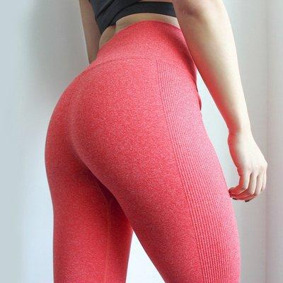 網紅提臀褲服飾瑜伽褲跑步健身服女士跑步褲運動裝 居家家BIU264