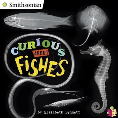 [文閲原版]好奇百科 魚類 英文原版 Curious About Fishes 水底生物科普 自然生物知識科普繪本 6-12歲