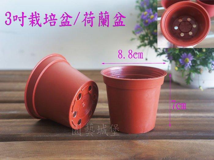 【園藝城堡】3吋栽培盆 荷蘭盆 紅色圓型盆 紅盆  草花用盆 花盆