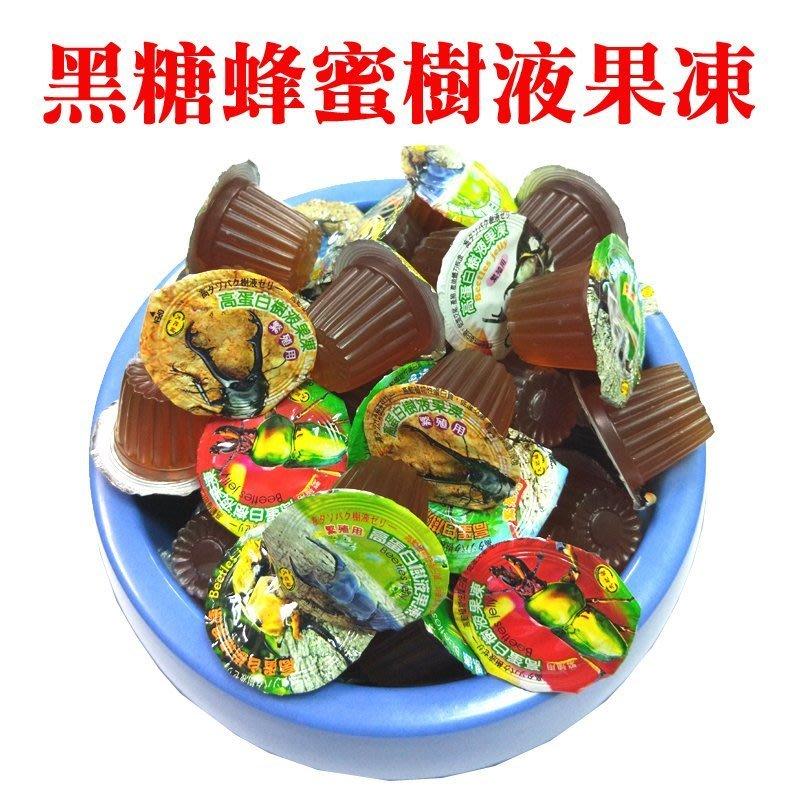 獨角仙/鍬形蟲/各種昆蟲/日本甲蟲果凍(黑糖蜂蜜樹液果凍) 16g/顆