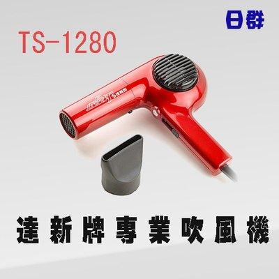 【日群】達新牌專業吹風機TS-1280另售FD-639 TS-1293 TS-1293G TS-318A TS-2670