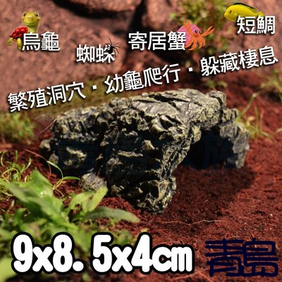 Y。。。青島水族。。。NS-06台灣Oracle甲骨文-世界奇景 躲藏躲避 裝飾 造景 短鯛 螯蝦==龜山島繁殖洞穴