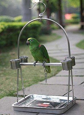 【易發生活館】鳥籠 不銹鋼鸚鵡站架/鸚鵡籠/鳥籠/鳥架子/鸚鵡架-便攜型 生活、居家