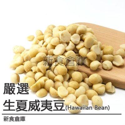 夏威夷豆600G( 生夏威夷豆 / 夏威夷火山豆 / Hawaiian Bean / 堅果 )新食倉庫