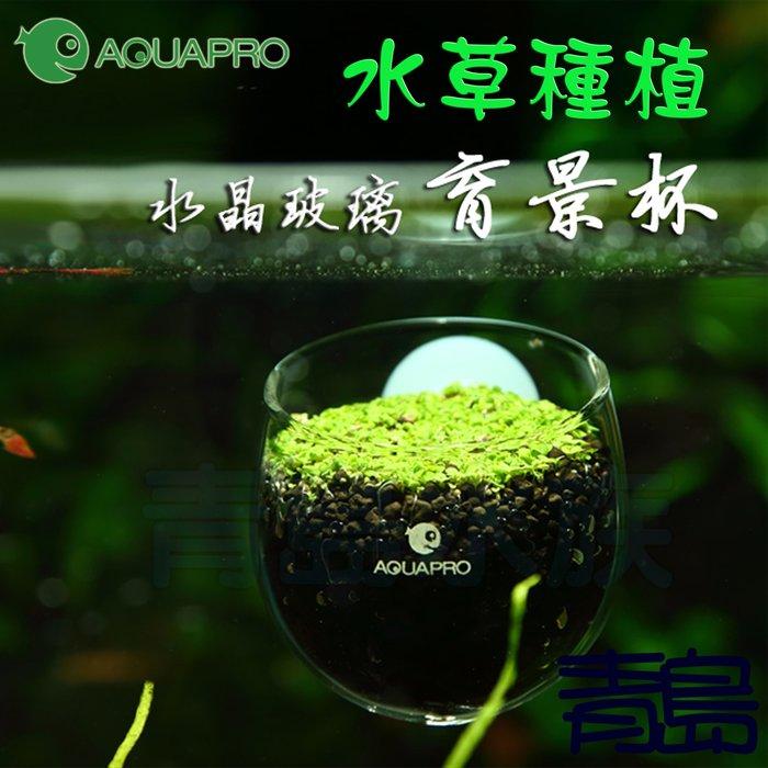 Y。。。青島水族。。。XGP-01中國AQUAPRO羨魚-水草飼育造景盆 玻璃育景杯 波卡杯 造景杯==缸內/波爾卡