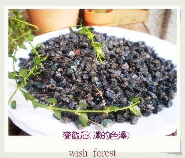 WISH FOREST【種子盆栽必備麥飯石】淨化水質,一包50元【買二送一】~可刷卡