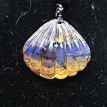 多米尼加藍珀 多明尼加藍珀 藍珀貝殼(背面留薄皮)
