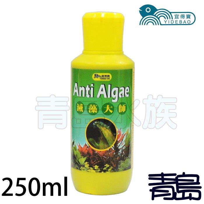 。。。青島水族。。。台灣宜得寶------超級強力除藻劑(強力推薦) 藻可清 滅藻大師==250ml
