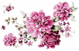小妮子的家@手繪系列水移畫/古典玫瑰轉印貼紙/家具貼~2.26