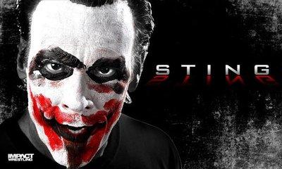☆阿Su倉庫☆WWE摔角 TNA巨星 Sting Banner 瘋狂史汀巨幅旗幟造型款海報 熱賣特價中