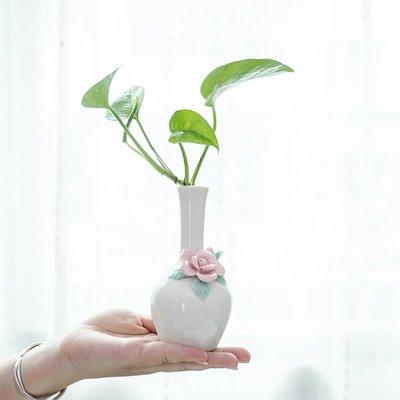 爆款簡約歐式陶瓷小水培花瓶擺件客廳插花干花裝飾品綠蘿迷你香薰花器#簡約#陶瓷#小清新