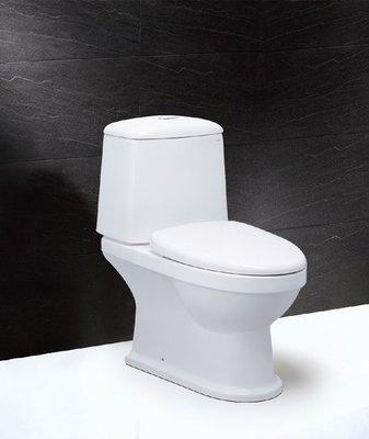 【歐雅系統家具】Caesar 二段式羅馬通馬桶CF1530U-12~22CM