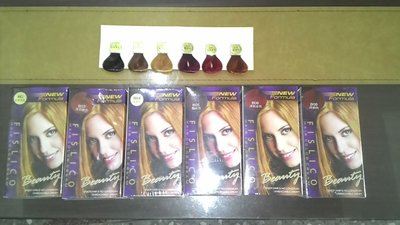 (台灣製造) NEW Formula FISLICO 菲思麗可 護髮染髮乳6色選擇~便宜賣125元/盒