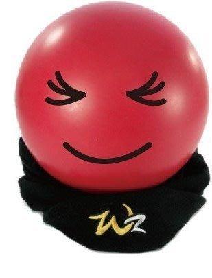 貳拾肆棒球--WOODZ 限定版WZ金銀標保暖頭套/護頸套/黑