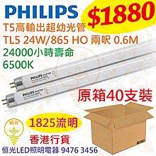 PHILIPS 飛利浦 高輸出超幼光管 16mm T5 HO 24W 6500K 兩呎 0.6M 原箱40支 香港行貨