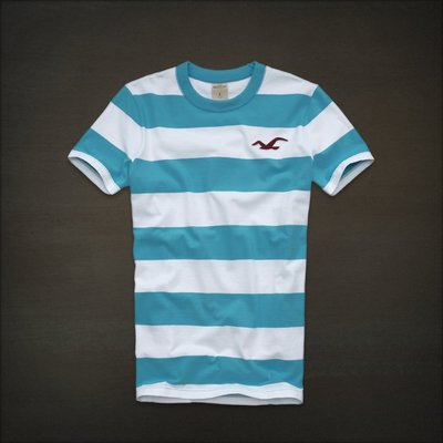 🇺🇸 Hollister logo 海鷗 刺繡藍白條紋 Tee (M) Abercrombie A&F Hco