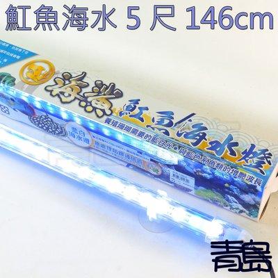 五1中0↓V。。青島水族。。D-1800台灣SEAxSHARK海鯊--LED水中燈 增豔 增艷==魟魚海水6尺176cm