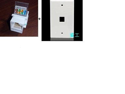 省錢 整組 網路插座(8P8C)+專用面板 新款 免工具安裝 電腦 CAT.5E CAT.6E 資訊插座 壁插 RJ45