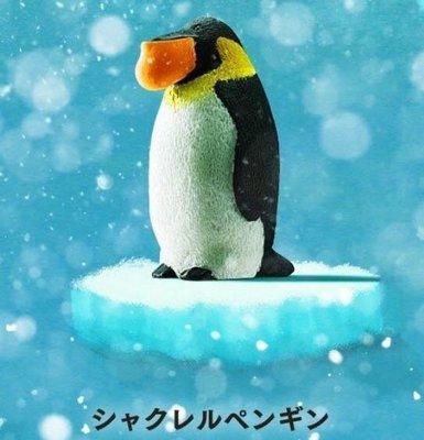 Takara 熊貓之穴 シャクレルプラネット3 Shakurel Planet 3 下巴兜兜 戽斗動物園P3 (企鵝)
