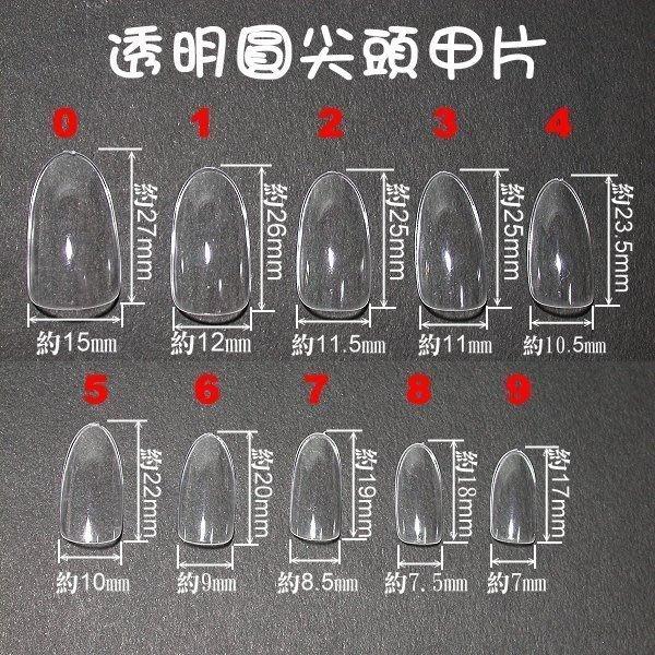 最新的喔~《專業造型圓尖頭甲片-有透明、自然、白色等款》~每盒100片裝~數量有限