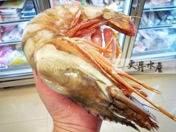 【大昇水產】無敵大/巨無霸_野生急凍海草蝦/草對蝦(非養殖)