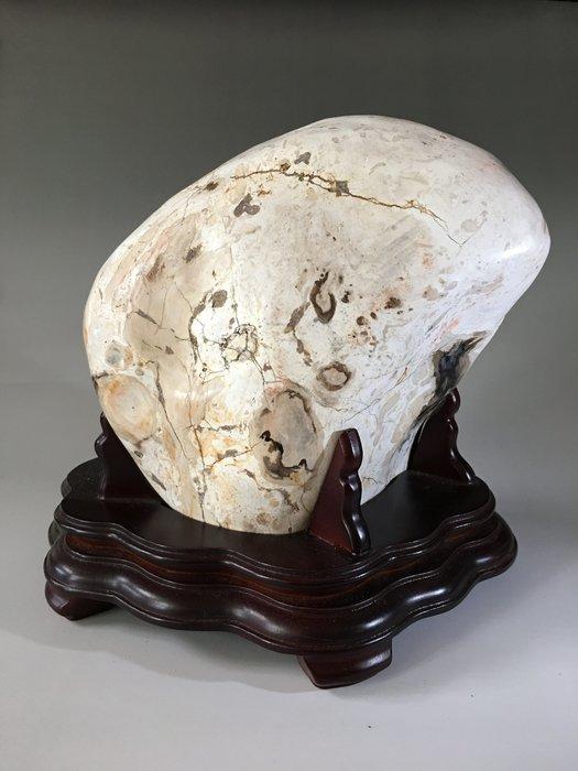 *藏雅軒*早期收藏-自然風化-原礦雅石-黑檀木化石-4432g