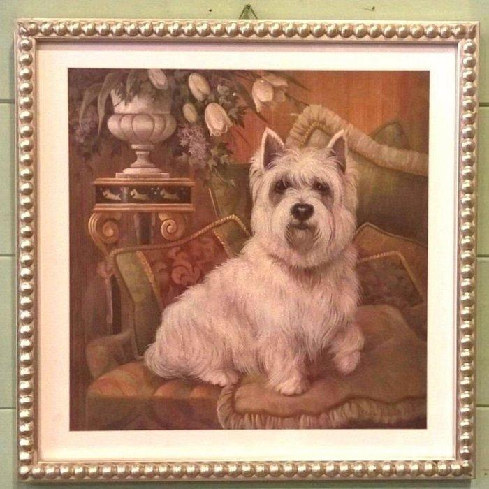 《齊洛瓦鄉村風雜貨》義大利復古狗狗版畫 掛畫 居家裝飾 西高地梗犬 吉娃娃 兩種樣式