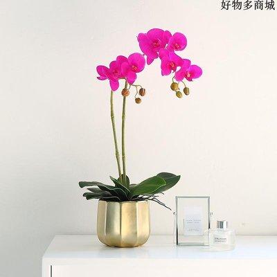 精選 手感蝴蝶蘭單支仿真花現代北歐客廳金色盆栽擺件高檔假花裝飾擺設