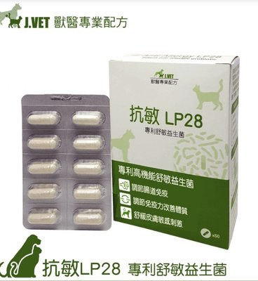 抗敏LP28 專利舒敏益生菌 60顆膠囊/盒