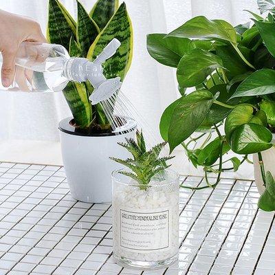 【可愛村】長嘴多肉植物澆花灑水器 澆花器 花灑 灑水器 植物澆水器