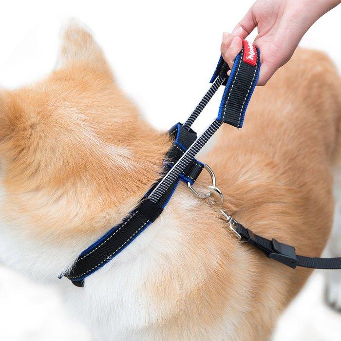 熱賣款--狗狗牽引繩項圈中型大型犬遛狗繩金毛拉布拉多狗鏈子狗繩寵物用品#寵物用品#衣服#時尚#可愛