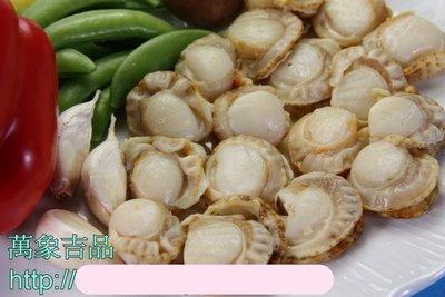 【萬象極品】小帆立貝(肉)/ 約1000g~教您做色香味俱全的~甜椒三色炒鮮貝~和鮮甜好喝的湯品~芥菜鮮貝湯